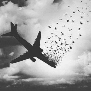 پروفایل تسلیت سقوط هواپیما | موج باز - پیام تسلیت هواپیما