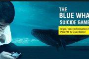 بازی نهنگ آبی چیست؟ (بازی نهنگ سفید چیست؟)