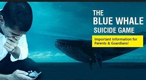 اطلاعاتی در مورد بازی نهنگ آبی (اپلیکیشن ، مخترع ، طراح بازی نهنگ سفید)