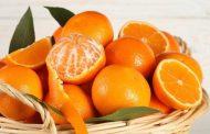 خواص نارنگی و پرتقال چیست؟ (طبع پرتقال و نارنگی)