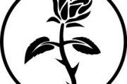 رز سیاه چه معنایی می دهد؟