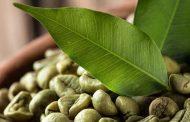 روش مصرف قهوه سبز برای لاغری