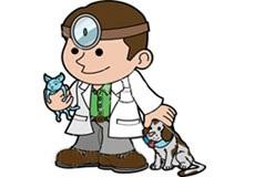 پروفایل روز دامپزشک