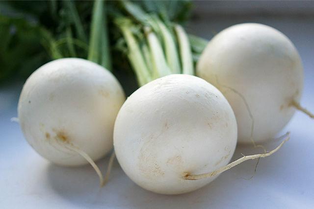 خاصیت ترب سفید (خواص ترب سفید + خواص درمانی تخم ترب)
