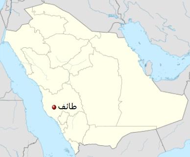 طائف شهری از شهرهای استان مکه