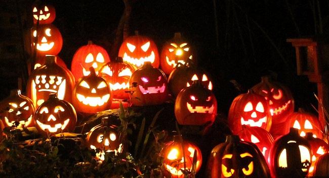 عکس کدو تنبل های هالووین