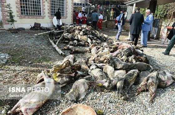 عکس سقوط هواپیما بوئینگ ۷۰۷ باری ارتش