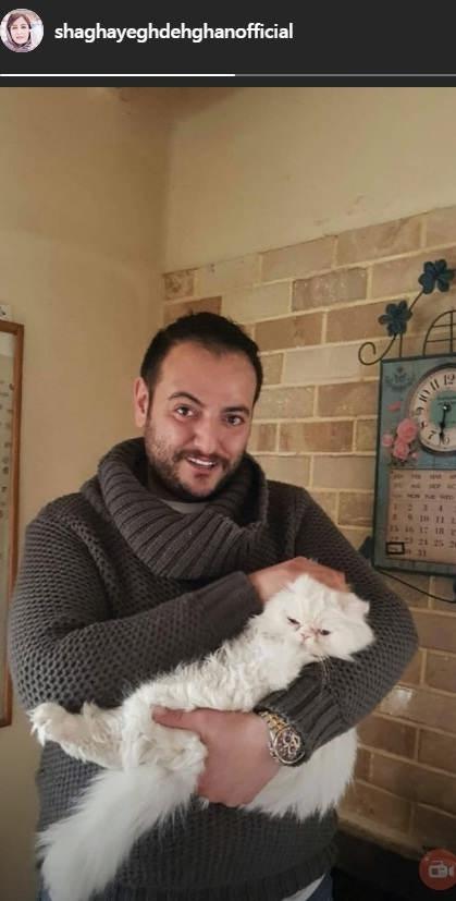 استوری شقایق دهقان در مورد گربه آزاری برادرش