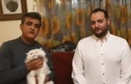 برادر شقایق دهقان گربه را به مرکز حمایت از حیوانات داد