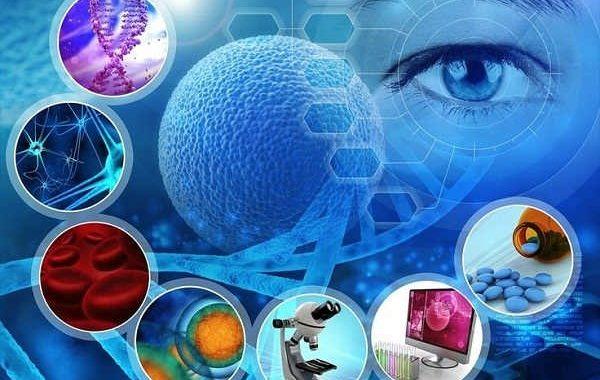سلول های بنیادی چیست؟