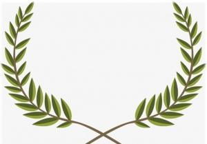 زیتون نماد چیست؟